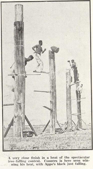 1929 1